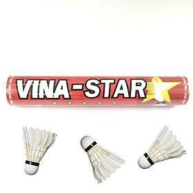 Cầu lông Vina/Star đỏ, ống 12 quả