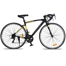 Xe đạp thể thao  Fornix F8