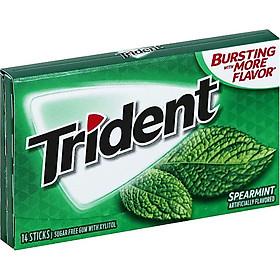 Lốc 12 thanh Kẹo gum Trident Spearmint vị Bạc hà (14 viên - Sugarfree)