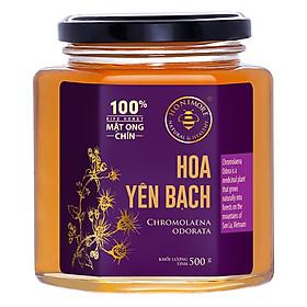 Mật Ong Chín Honimore Hoa Yên Bạch (500g)