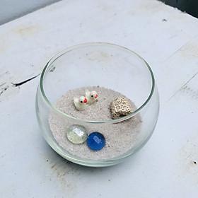 Bể cá mini tròn để bàn tặng phụ kiện