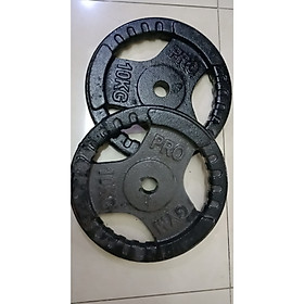 Tạ Đĩa Gang - 3 lỗ (Phuy 27) - 10KG / 2 miếng