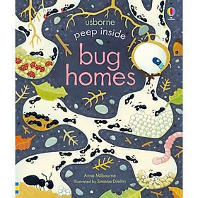 Peep Inside Bug Homes