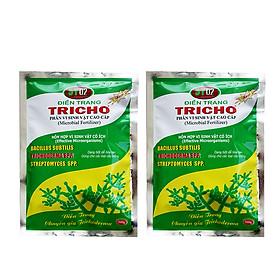 Combo 2 gói chế phẩm vi sinh Trichoderma 500g dạng bột cho hoa lan, hoa hồng, kiểng, cây ăn trái (nấm đối kháng Trichoderma, Bacillus subtilis) phòng ngừa nấm bệnh hại - Microbial fertilzer