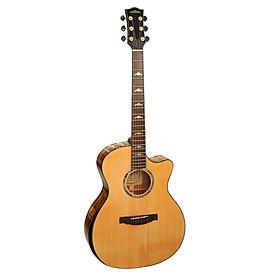 Đàn Guitar Acoustic E60LMT (Full solid) - Gỗ Nguyên Tấm