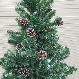 Cây thông noel 3 loại lá gắn trái thông lăn kim tuyến ( Cao 90cm)