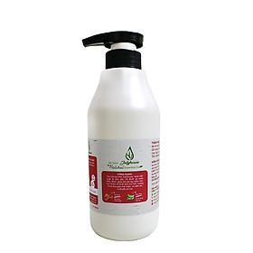 Gel rửa tay khô Nha đam hương tinh dầu bưởi chùm 500ml JULYHOUSE công dụng khử khuẩn khử mùi bảo vệ da tay, giúp mềm mịn da với hương tinh dầu thư giãn tốt cho tiêu hóa hàng chính hãng xuất xứ việt nam