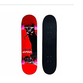 Ván Trượt Skateboard 950-07