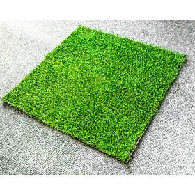 Thảm cỏ nhân tạo cao cấp 2cm kích thước 50cm x 50cm