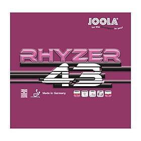 Mặt Vợt Bóng Bàn Joola Rhyzer 43