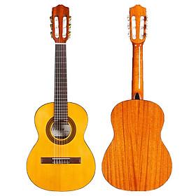 Đàn Guitar Classic Cordoba C1 1/4 - Thương hiệu Tây Ban Nha, phân phối Chính Hãng - Ghita kèm móng gẩy và Kèn Kazoo DreamMaker