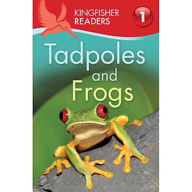 Kingfisher Readers Level 1: Tadpoles And Frogs