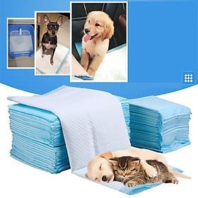 Tã giấy vệ sinh cho chó - dùng lót khay vệ sinh chó hoặc lót chuồng chó
