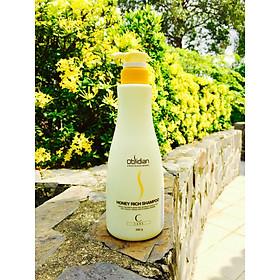 Cặp dầu gội/xả mật ong nuôi dưỡng tóc Obsidian Honey Rich Hàn Quốc 580ml tặng kèm móc khoá-6