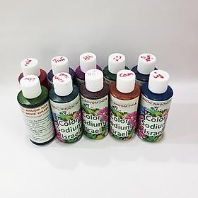 Set 10 Chai Nước Nhuộm Hoa Tươi Công Nghệ Israel (chai 100ml x10 màu) giúp học sinh nhuộm đổi màu hoa theo ý muốn tại trường và tại nhà