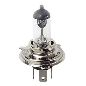 Bóng Đèn Halogen Bosch H4 24V 130/90W