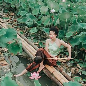 Chụp ảnh sen Hồ Tây tại Hà Nội