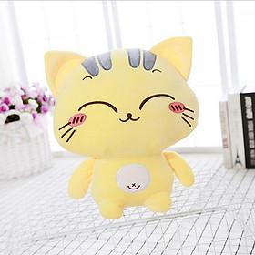 Gấu bông mèo Lucky 25cm TNB135 biểu cảm siêu đáng yêu, ngộ nghĩnh - Mẫu ngẫu nhiên