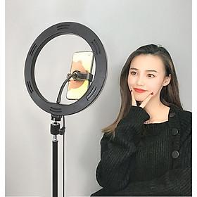 Đèn LED Livestream 26cm Hỗ Trợ Ánh Sáng Livestrem, Chụp ảnh, Quay Video, Spa, Makeup