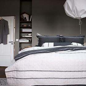 Bộ chăn ga gối chần gòn 5 món cotton Hàn Julia 262RT16