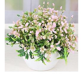 Chậu hoa lá cỏ nhiều màu trang trí ( NHIỀU MÀU)