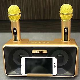 Loa Hát Karaoke SD301 Kèm 2 Mic Không Dây Giau Màu Ngẫu Nhiên