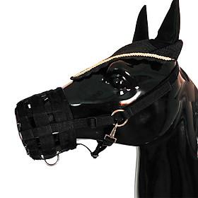 Dây Đeo Đầu Và Mõm Ngựa (3 Size)