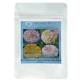 Hạt Giống Hoa Cúc Lá Nhám - CandyStripe - Zinnia eleganz (10 Hạt)