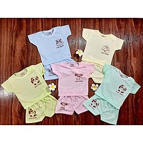 Bộ quần áo cộc tay cotton giấy MẪU TRƠN cho bé trai bé gái từ 0-15 tháng