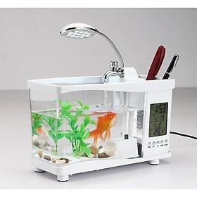 Bể cá mini để bàn làm việc