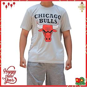 Áo thun bóng rổ NBA Chicago Bull  chất vải mè Thái thoáng mát