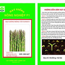 Gói 200 hạt giống măng tây xanh F1