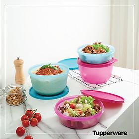 Bộ hộp bảo quản thực phẩm Modular Bowl Tupperware 1L, 2L (4 hộp)