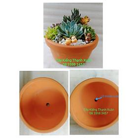Chậu đất nung trồng cây - Chậu hình cái Tô trồng cây sen đá, xương rồng có lỗ thoát nước,kích thước miệng chậu 14,5 cm