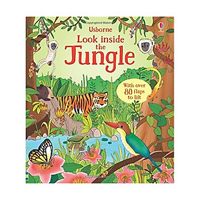 Look Inside The Jungles