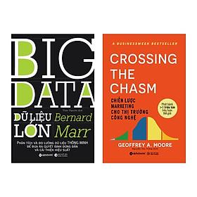 Combo Sách: Big Data - Dữ Liệu Lớn + Chiến Lược Marketing Cho Thị Trường Công Nghệ