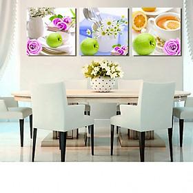 Tranh Canvas treo tường nghệ thuật | Tranh bộ nghệ thuật 3 bức | HLB_166