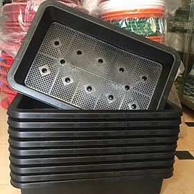 Combo 10 Khay Nhựa Trồng Rau Kích Thước 65 x 42 x 16 cm (Màu Đen)