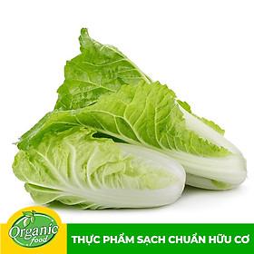 Cải Thảo Hữu Cơ Organicfood - 300g