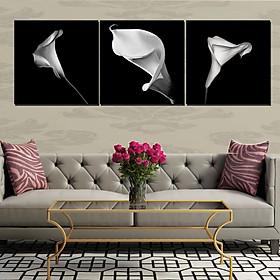 Tranh Canvas treo tường nghệ thuật | Tranh bộ nghệ thuật 3 bức | HLB_146