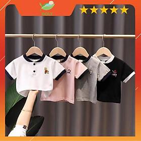 Áo Thun Polo Cho Bé Trai Và Bé Gái Cotton 100% Từ 8kg Đến 28kg DOLY STORE