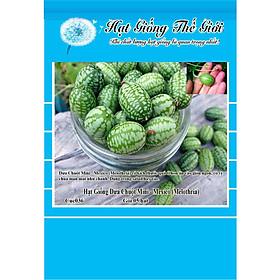 5h Hạt Giống Dưa Chuột Mini - Mexico (Melothria)