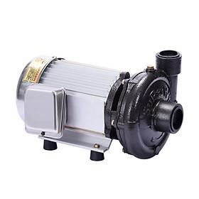 Máy bơm nước giếng sâu Super Win  SP-1100 1.5 hp cao cấp