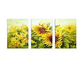 Bộ 3 Tranh Hoa Hướng Dương Tắm Nắng