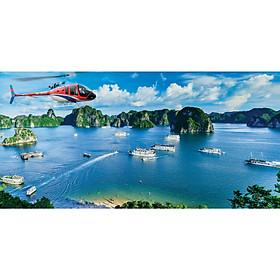 Tour 4N3Đ Miền Bắc (Hà Nội, Hạ Long, Yên Tử, Ninh Bình) - Chỉ 5.3 triệu bao gồm Vé MB từ SG, Hotel 3-4*