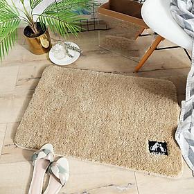Thảm chùi chân phòng khách nhà tắm cao cấp 40x60cm