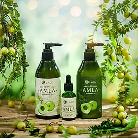 Bộ Gội - Xã - Serum ngăn rụng tóc AMLA LACO