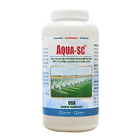 AQUA SC - Vi sinh xử lý nước hồ cá cảnh, cá koi, cá chép, nước ao nuôi trồng thủy sản - Chai 1 quarter (≈ 1 lít)