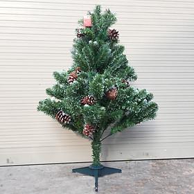 Cây thông noel 3 loại lá gắn trái thông lăn kim tuyến ( Cao 150cm)