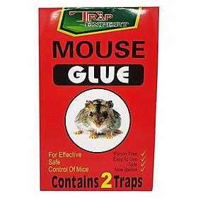 Tấm keo dính chuột siêu dính (2 miếng)